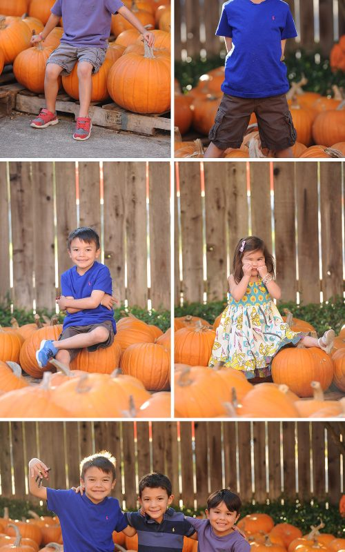 St. Martin's Pumpkin Patch 2014